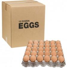 Cage Free Large Eggs 15 Dozen