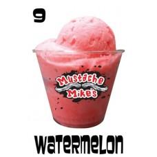M Mikes Watermelon Italian Ice 3 Gal Tub