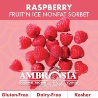 Fruit N Ice Raspberry Sorbet