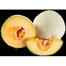 Cantaloupe Melon 9 Sz 32 Lbs